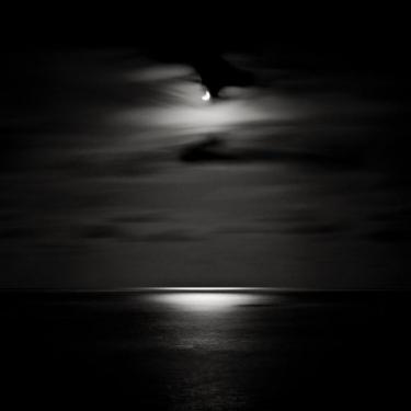 David Fokos - Solar Eclipse I - June 10, 2002, San Diego, California, 2002.jpg